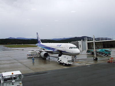 2009_111600041