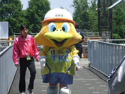 2010_060601371